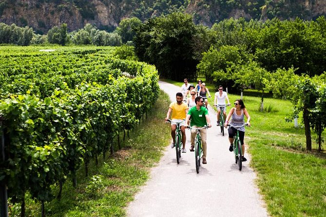 Wachau Valley Small-Group E-Bike Tour