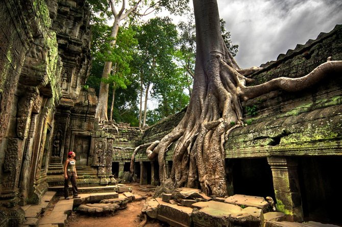 Ta Prohm and Banteay Srei Temples Private Tour from Siem Reap