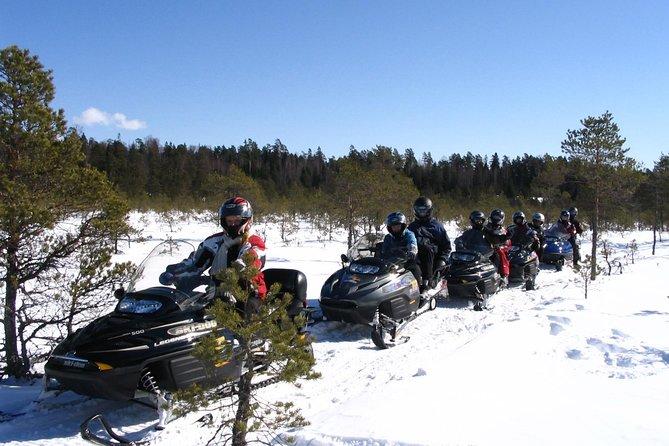 Snowmobile Safari in Tallinn