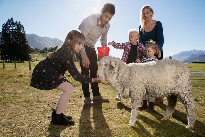 Lake Wakatipu Cruise and Mt Nicholas High Country Farm Tour