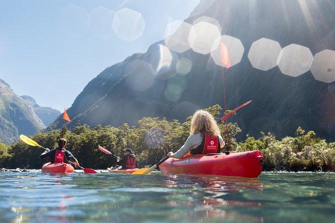 Cruzeiro em Milford Sound com excursão opcional de caiaque