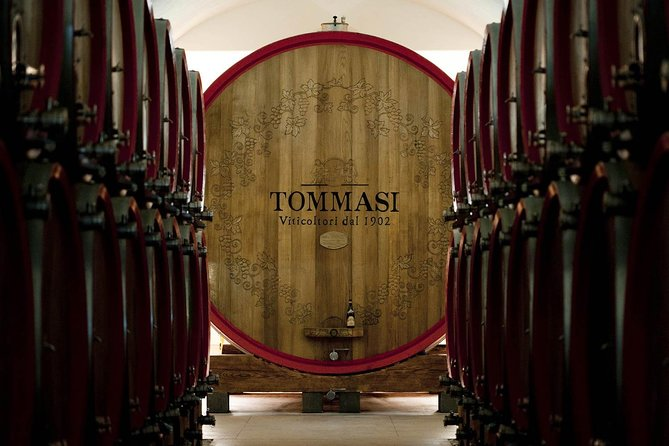 Amarone wine tasting experience at Cantine Tommasi from Verona photo 2