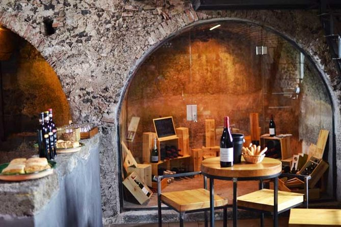 Half-Day Private Mt Etna Wine Tasting Experience from Catania