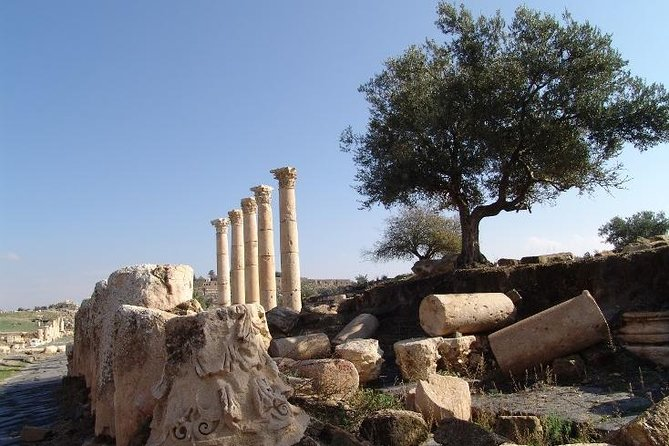 Private Guided Umm Quais and Jerash tour with lunch