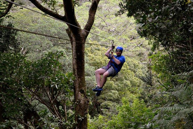 Guanacaste Volcano and Jungle Tour