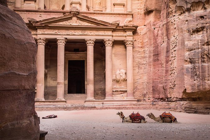 Petra: The Wonder of the World in a Day (Lunch Included)