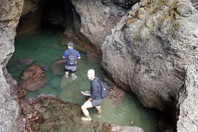 Explore caves at Piha