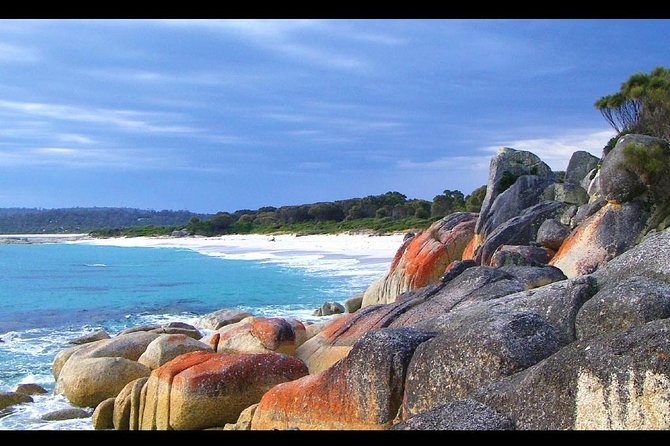 Bay of Fires Day Trip from Launceston photo 1
