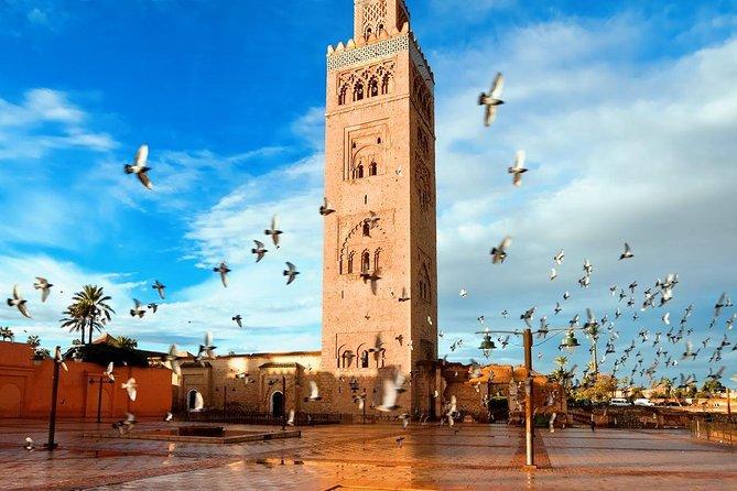City tour of Marrakech & Monuments