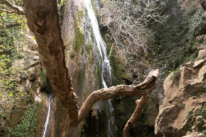Richtis Waterfall, Minoan History, Oldest Tree, North Coast (Luxury Adventure)
