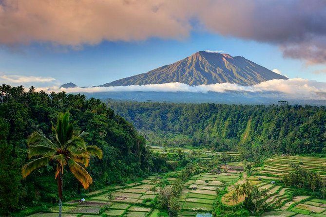 Best bali tour - costum your own itinerary