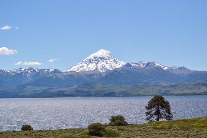 Tagesausflug zum Huechulafquen-See und zum Lanin-Vulkan