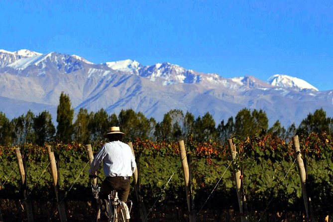 Private Tour: Full-Day Altamira Road Agritourism Experience from Mendoza