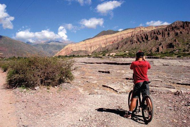 Excursión de medio día en bicicleta de montaña desde Juella hasta Tilcara.
