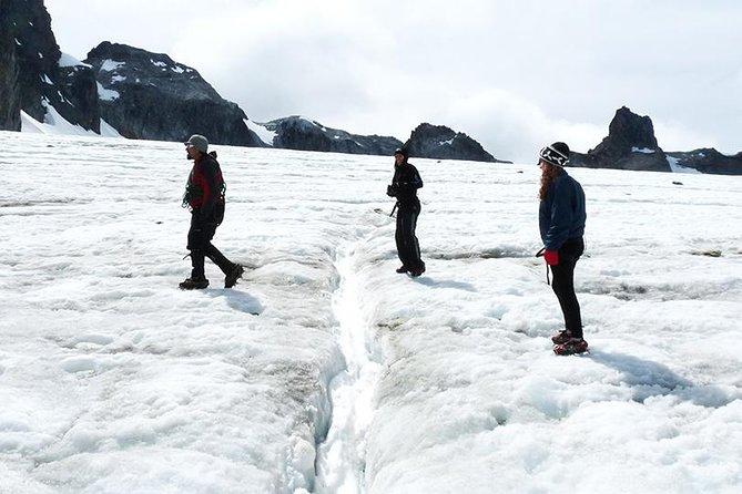 Albino's Eye Glacier Full-Day Trekking Tour from Ushuaia