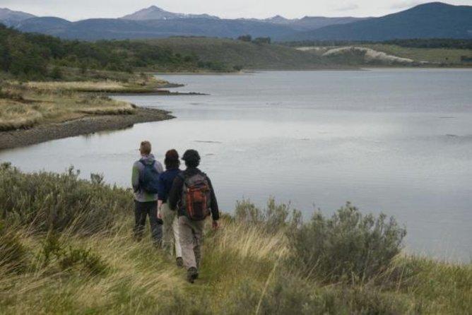 Tierra del Fuego Eco-Adventure: Beagle Channel Canoeing, Penguin Colony and Gable Island