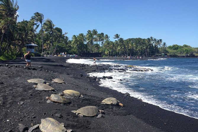 Hawaii Island Circle Small Group Tour Waterfalls Hilo Volcano Black Sand Beach