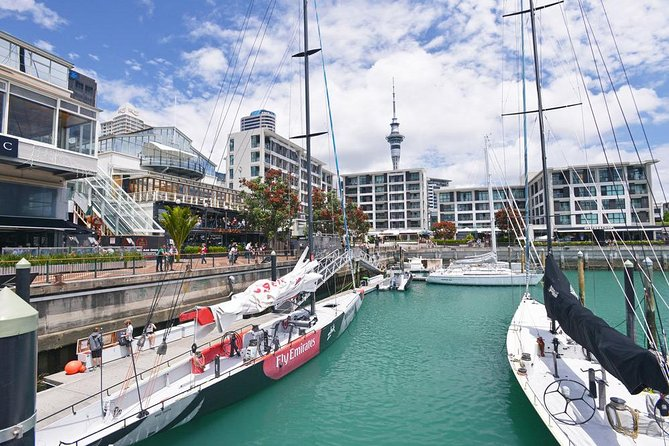 Auckland City Highlights Small Group Tour