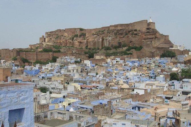 Jodhpur - Mehrangarh the Sita way Cook in a Blue House