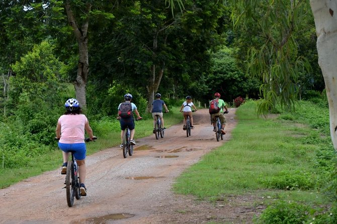 Half Day Cycling Tour to the White temple