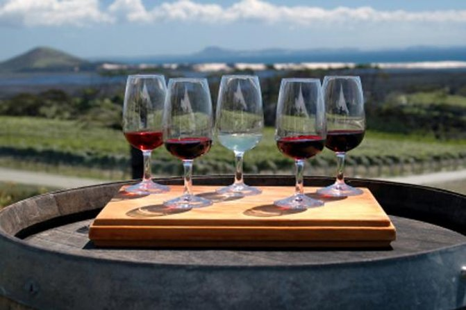 Maipú Wine-Tasting Tour from Mendoza Including Trapiche Winery