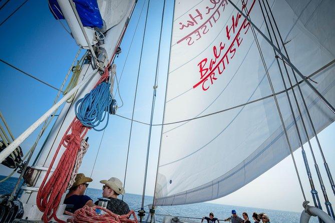 Aristocat Sailing Cruise