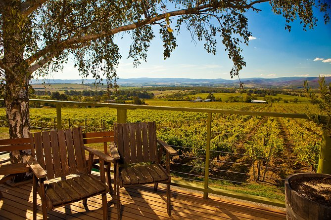 Yarra Valley Small-Group Wine Tour med 2 kursus frokost og morgen te