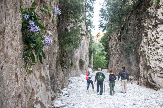 Hike the Gorgeous Gorge