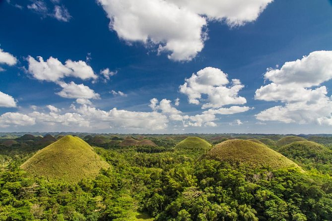 Image result for Enjoy a Bohol Tour