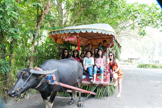 Villa Escudero Coconut Plantation Day Trip from Manila