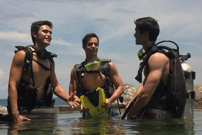 Full-Day Anilao Diving Package from Manila
