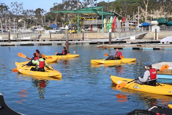 Dana Point & Huntington Beach: Full Day Sea Kayak, Hike, Bike & Lunch
