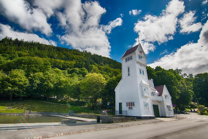 Cruise Special: Senior Citizen - Bergen city private tour