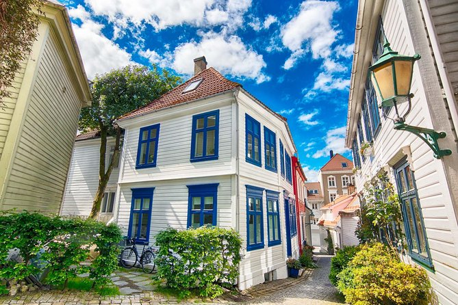 Cruise Special - Bergen private city tour