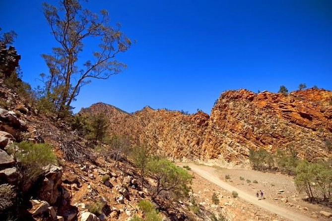 Lake Eyre and Flinders Ranges 4 Day Small Group 4WD Eco Safari
