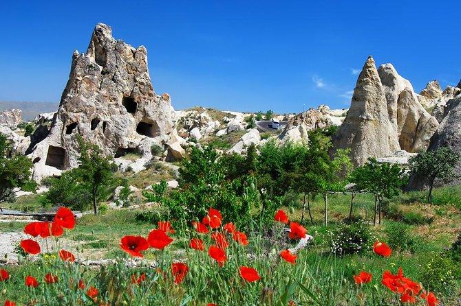 7-Day Turkey Tour from Kusadasi: Istanbul, Pamukkale, Ankara, Cappadocia and Ephesus