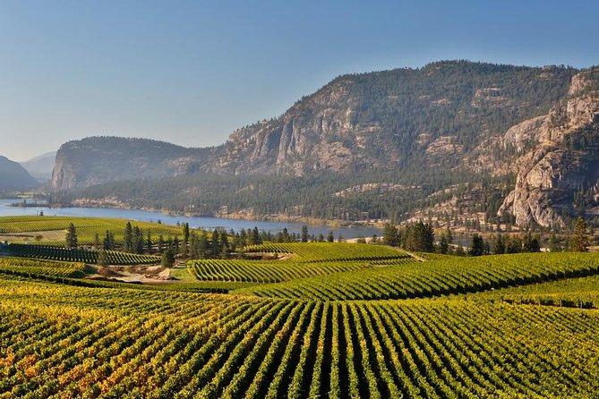 Vineyards and Lake Okanagan