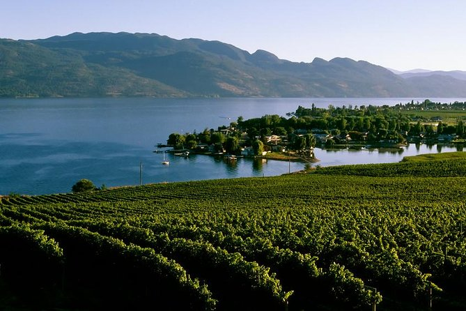 West Kelowna Wine Tour - 4 Hrs