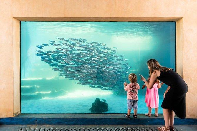 AQWA The Aquarium of Western Australia: General Admission