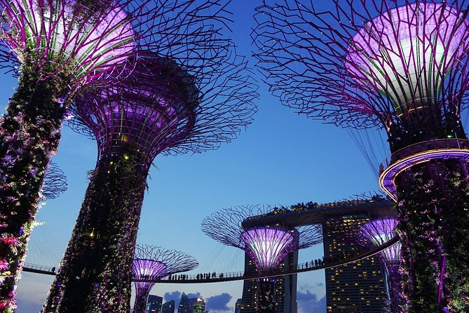 2-Way Transfer to Gardens by the Bay & Marina Bay Sands
