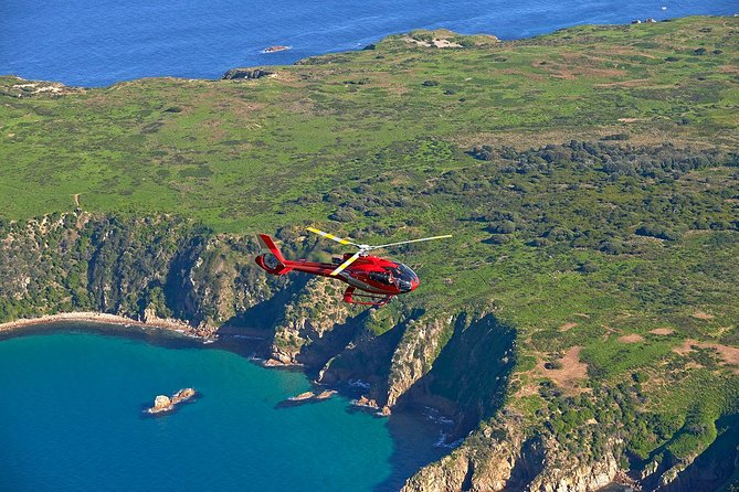 Private Phillip Island Tour with One-Way Helicopter Transfer