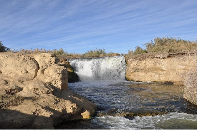 Day tour to Fayoum oasis from Cairo or Giza