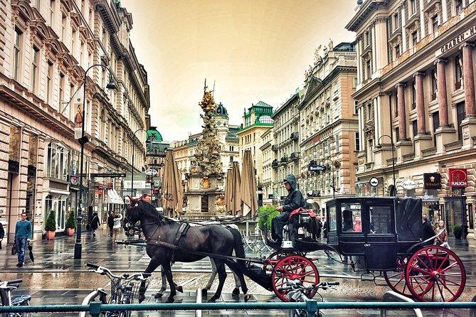 Excursión turística privada a Viena desde Budapest