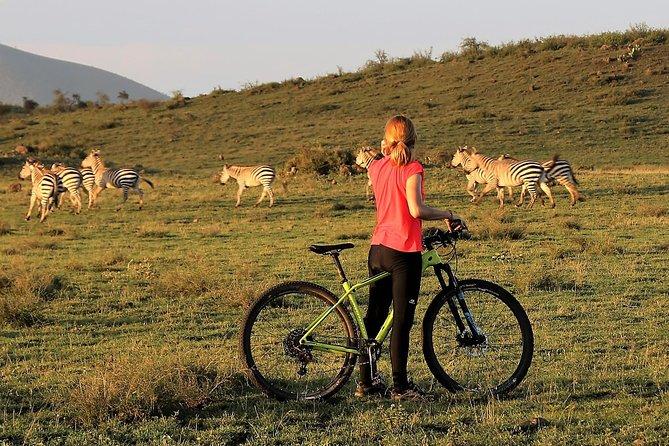 1 day Walking and Bike Safari in Arusha National Park