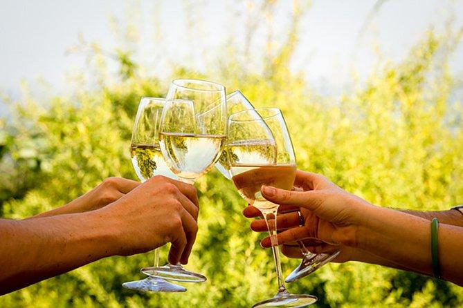 Paarl, Franschhoek and Stellenbosch Wine Tour from Cape Town