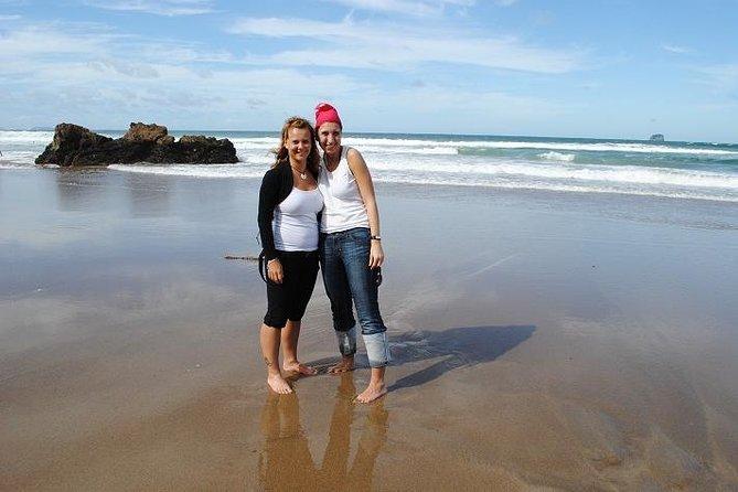 Excursão particular: excursão de oito dias pela Ilha Norte saindo de Auckland, incluindo Rotorua e Wellington