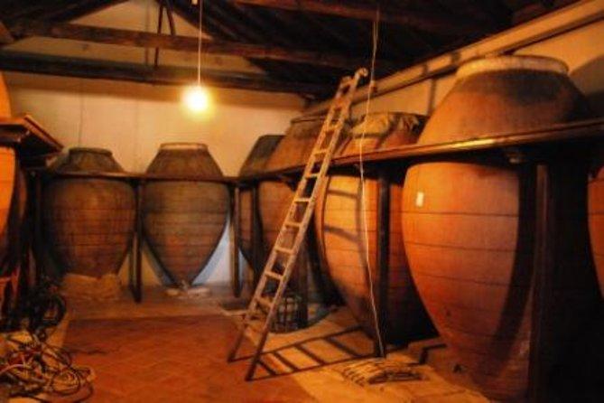Viagem diurna com degustação de vinhos para grupos pequenos, saindo de Madri