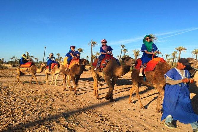 3-Day Tour: Marrakech to Merzouga by Dadès Valley plus Erg Chebbi Camel Trek