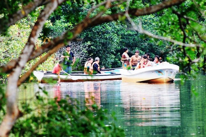 Recorrido ecológico sobre tortugas marinas y cocodrilos desde Huatulco con paseo en barco por los manglares
