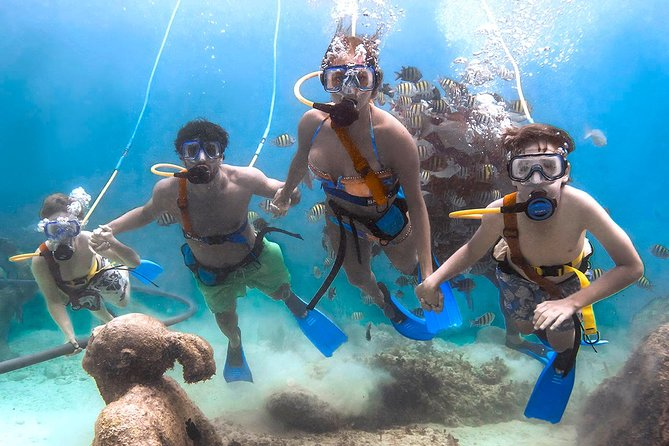 First Access to Xcaret with Express Transportation